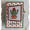 ART 2019 10 cactus NIDA 1