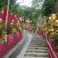 10000 buddhas 019