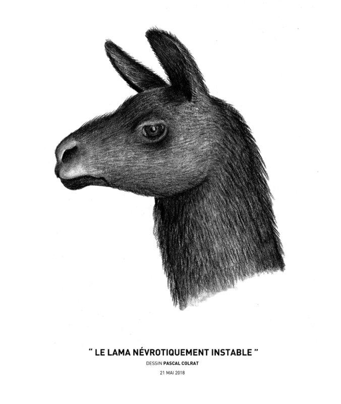 ___le_lama_ne_vrotiquement_instable___