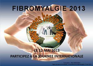 LOGO FIBRO 2013