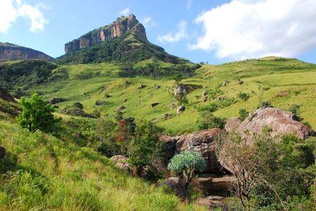 Afrique du Sud (971)