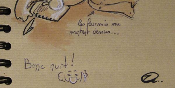 bdbretagne2010_p
