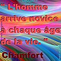 _ 0 CHAISARD CITATION 020