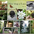 Mon blog a 5 ans...