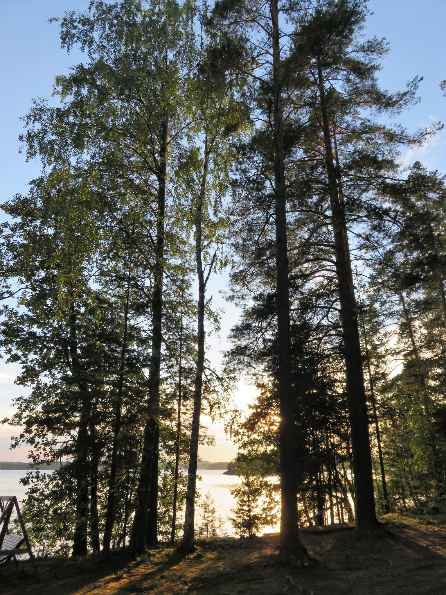 FINLANDE, Puumala. Les gardiens du lac