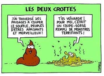 crottes