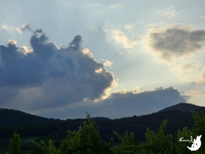 nuage chat Alsace3