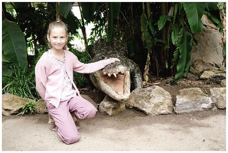 crocodile_Leslie_bis