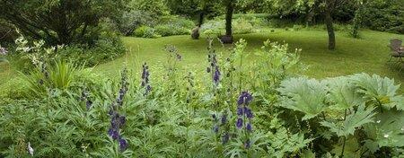 pano jardin 2012 7
