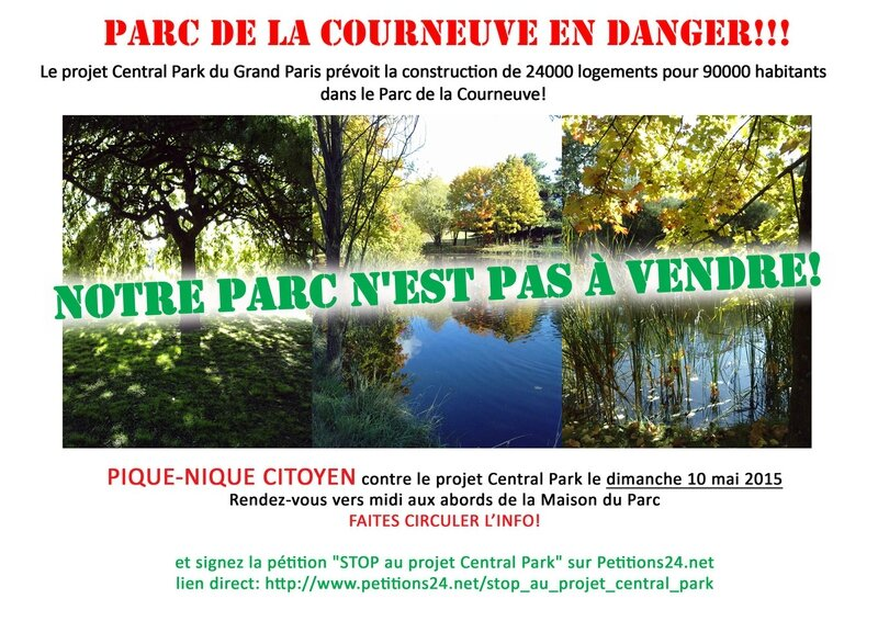 nonauprojetcentralparkw (2)