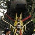 Chamundreeswari hills