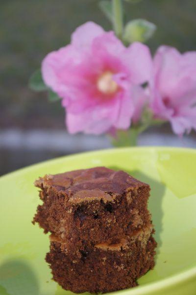 Gâteau marbré choco vanille 2013 (12)