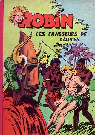 Robin_Afrique
