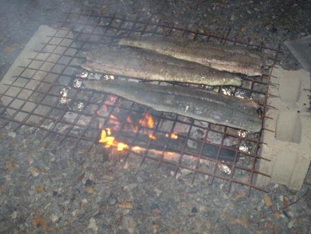 mettre_au_barbecue_avec_des_patates___cuire_dans_la_cendre