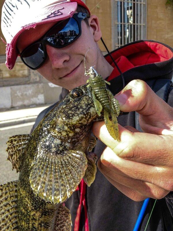 Gobie à grosse tête en rockfishing