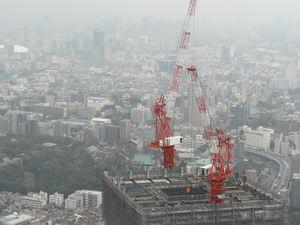 Tokyo03_Best_Of_07_Avril_2010_Mercredi_081_Ikebukuro_Sunshine_60_Grues
