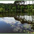 Lac Mimizan 05051514