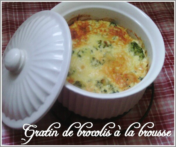 gratin-de-brocolis-a-la-brousse-1