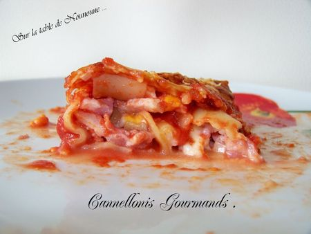 Cannellonis Gourmands 2