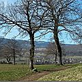Windows-Live-Writer/Promenade-en-libert_109C1/sans titre20140316_1438182014_thumb