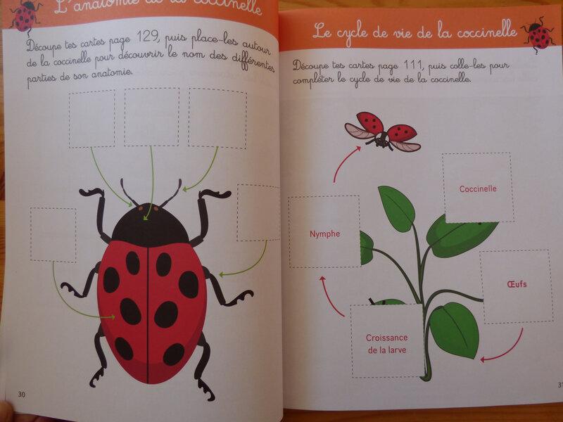 Mon grand cahier Montessori de découverte du monde (1)