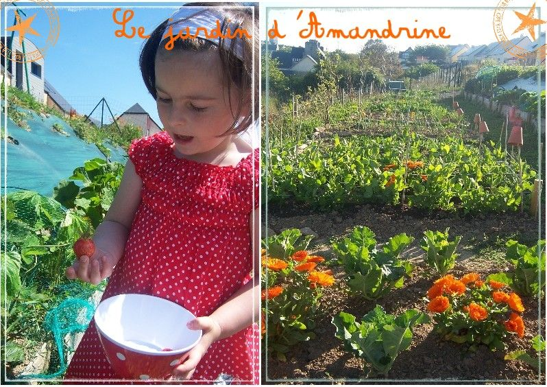 le_jardin_d_Amandrine