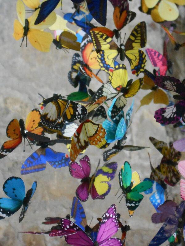 papillons_ventre_marionfleurs