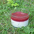 Panacotta vanillé au coulis de framboise gélifié et pépites de chocolat.
