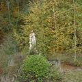 les bouleaux en fond de scène en automne: un rideau d'or