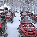 Laponie: moto-neige, chiens de traîneau, et autres activités