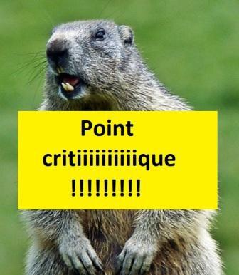 8-relacher-la-marmotte_181500_w620 - Copie