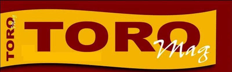 ToroMag