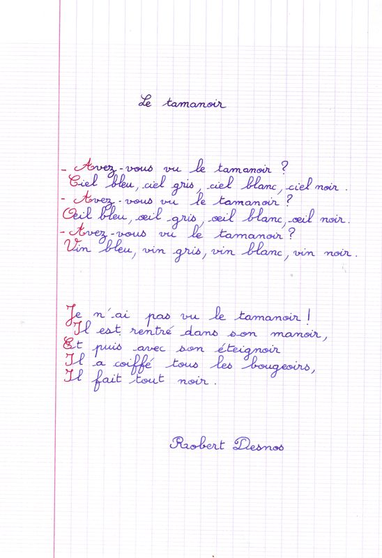 tamanoir_Desnos_1