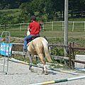 Jeux équestres manchots 2013 (246)