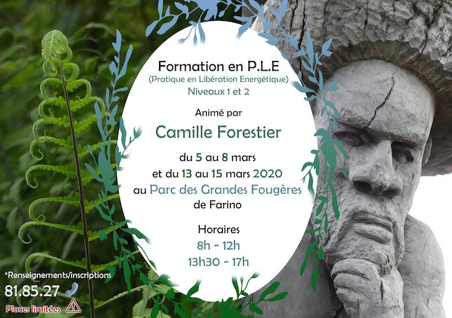 Proposition2_flyer_210mmlargX148mmhaut