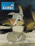 bambi_photo_france_1970s_2