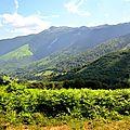 Orgues de Camplong et Mont Oelharisse...