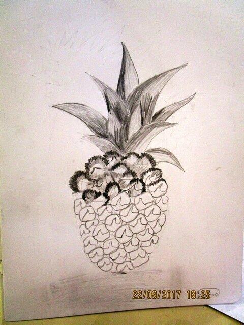 Dessin d\'un ANANAS au crayon - Domi Dessins et Peintures