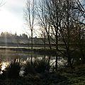 Au bord de l'étang,habité de silencele banc vide