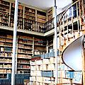 La bibliothèque des fonds anciens attaquée par le mérule