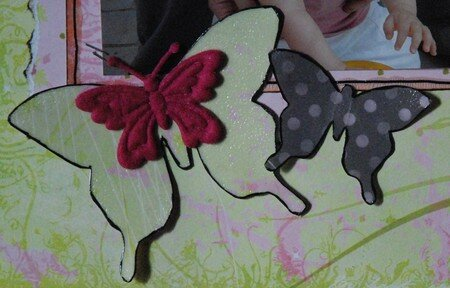 D_tail_Butterfly_1