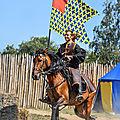 Préparatifs des seigneurs de tiffauges et de thouars pour accompagner en terre sainte guillaume ix, duc d'aquitaine