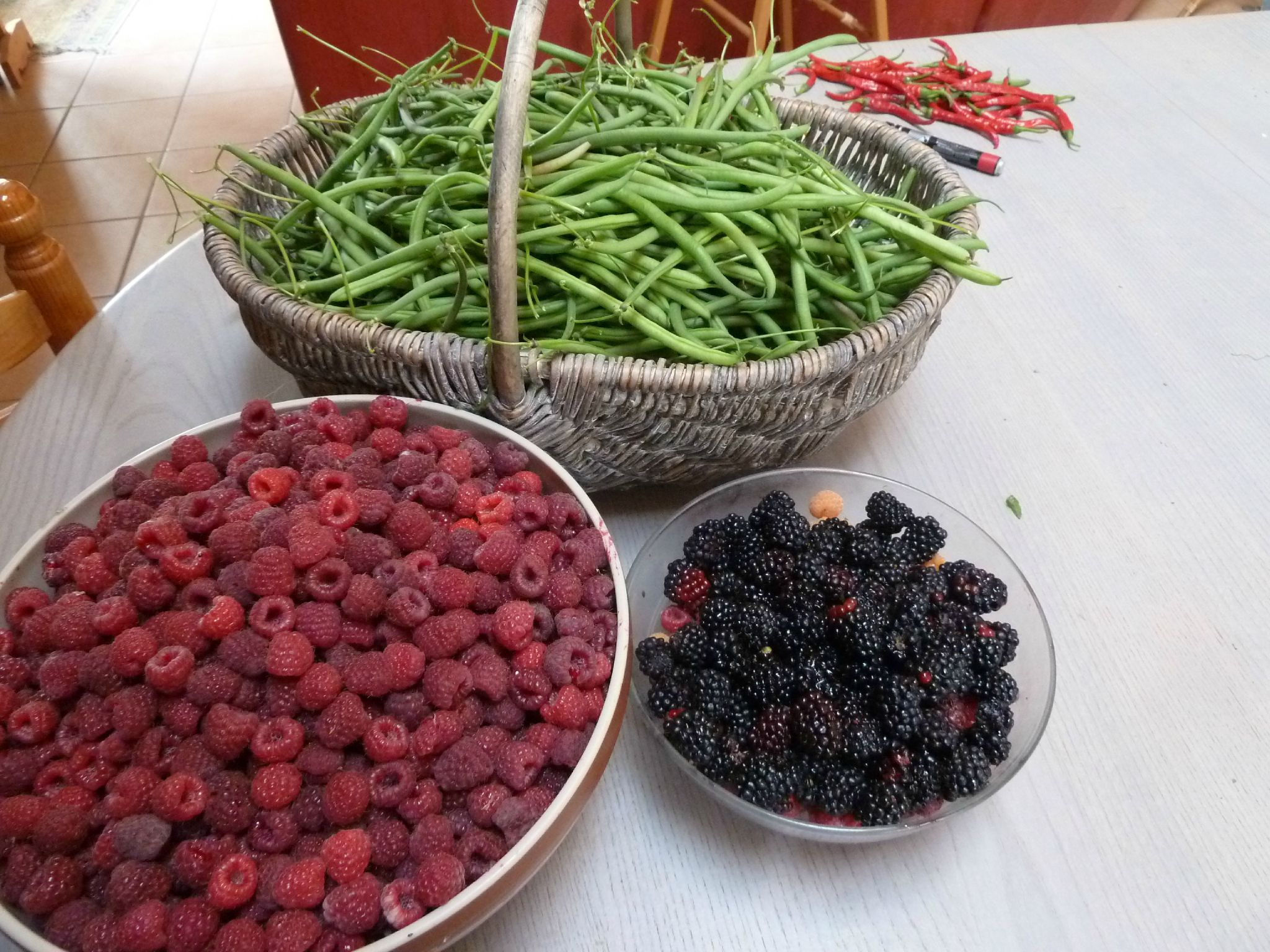 haricots verts-mûres-framboises -- www.passionpotager.canalblog.com