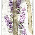 Lavande brodée au ruban de soie