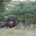 bivouac dans une foret d'epineux region jaisalmer