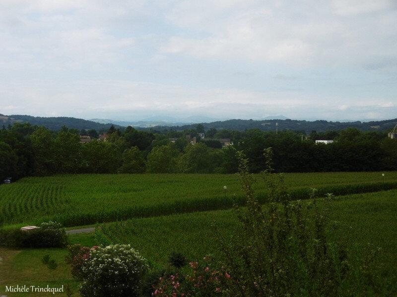1-Balade à Sauveterre 020819