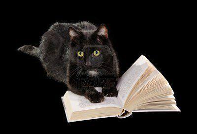 9344334-chat-noir-lire-un-livre-gisant-sur-fond-noir