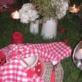 table picnic 039