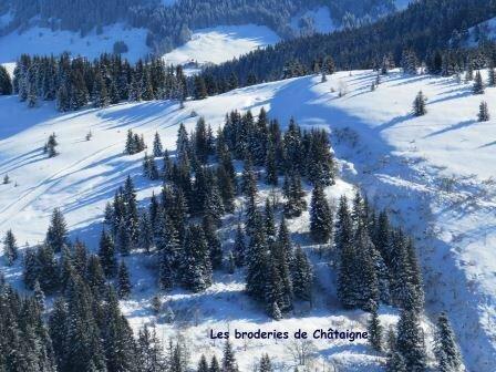 Petit Croisse Baulet - 0158