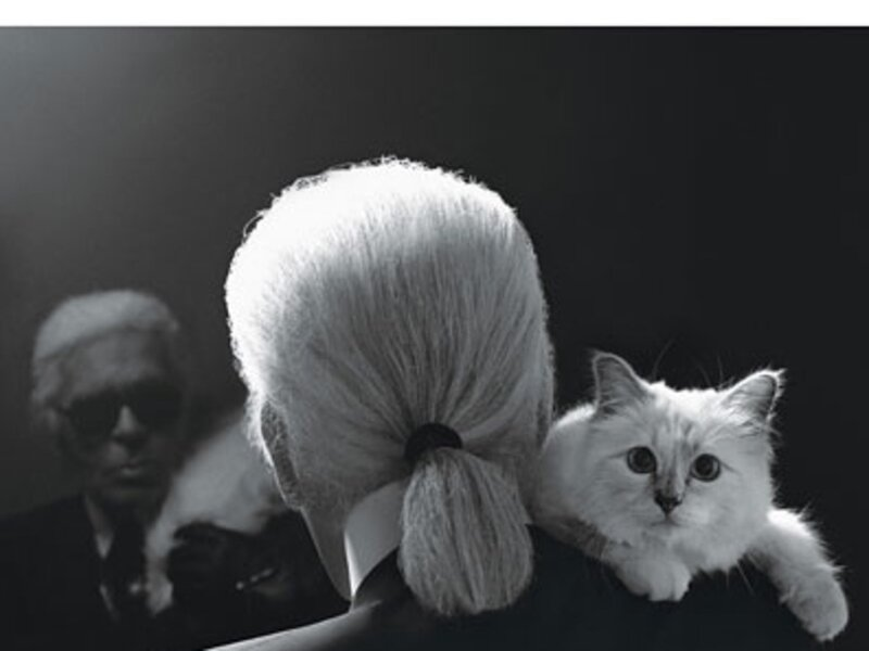 fass-karl-lagerfeld-chanel-muses-02-v
